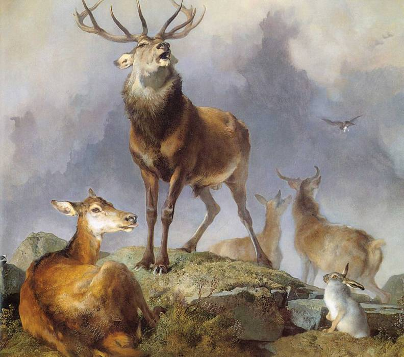Landseer-stags