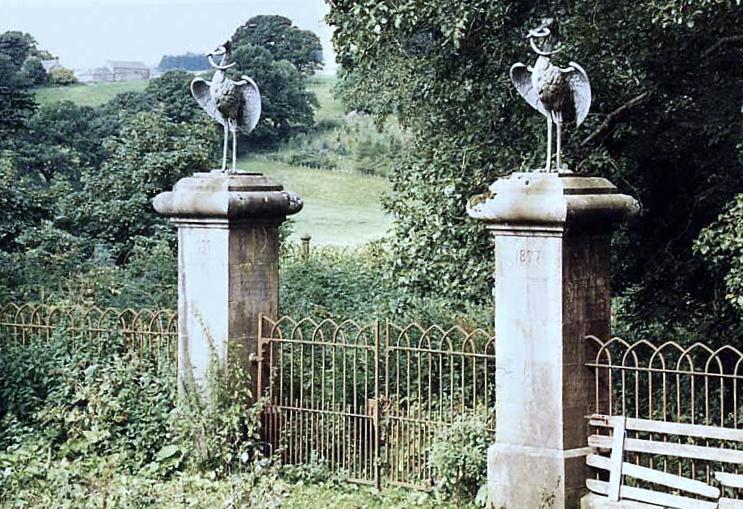 Mercer-Burial-Ground,-Glena