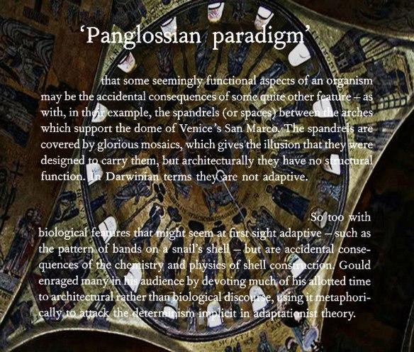 Panglossian-Paradigm