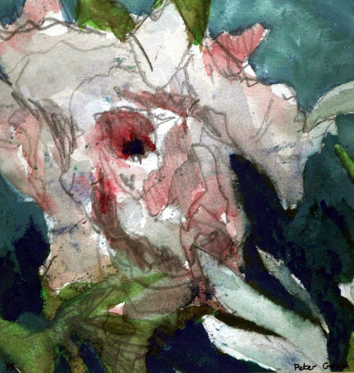 Rose for Sian, 1995 - Peter Gordon