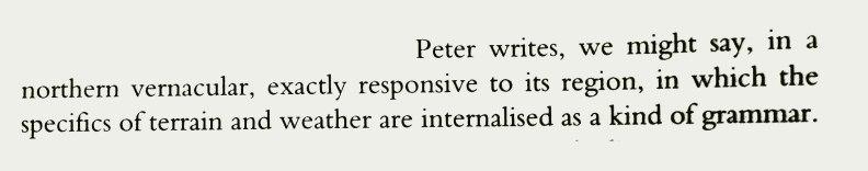 017-Peter-Davidson