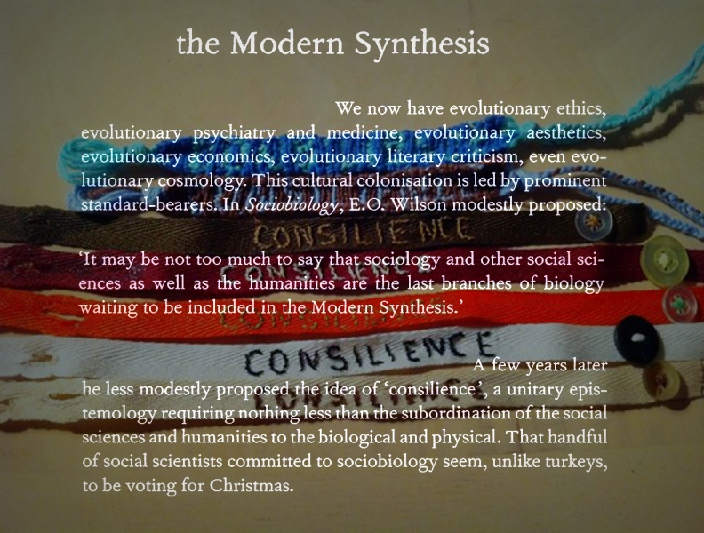 the modern synthesis