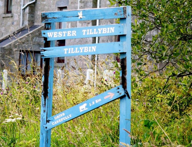 Tillybin-001