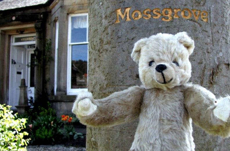 017-Mossgrove