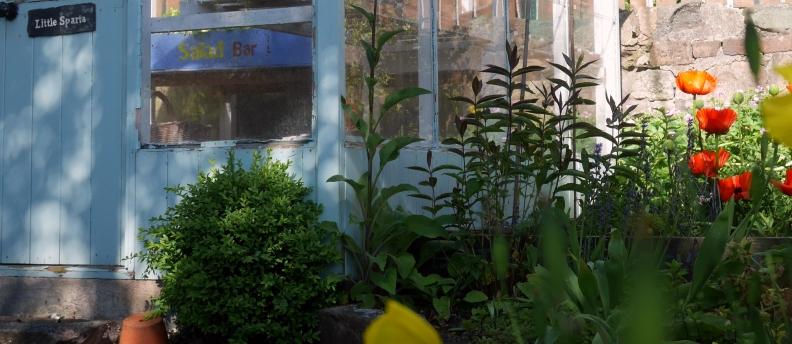Mossgrove garden, 14 June 2015 (16)