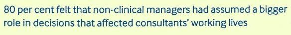 Consultant Survey 03