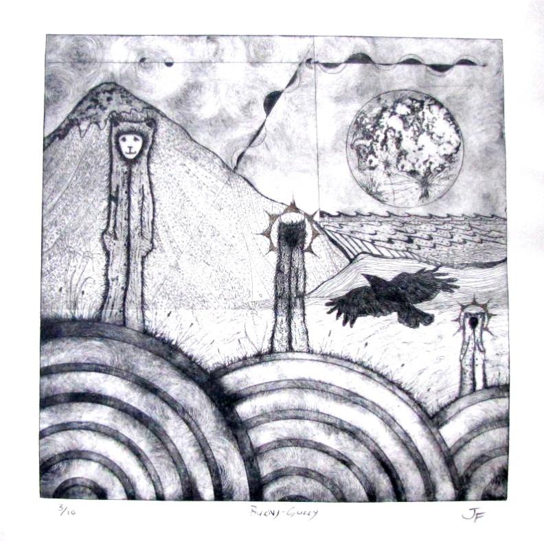 Burny-Gully-by-Dr-John-Flaxman---2013