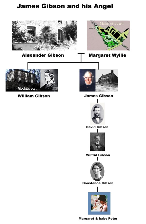 James Gibson, family tree