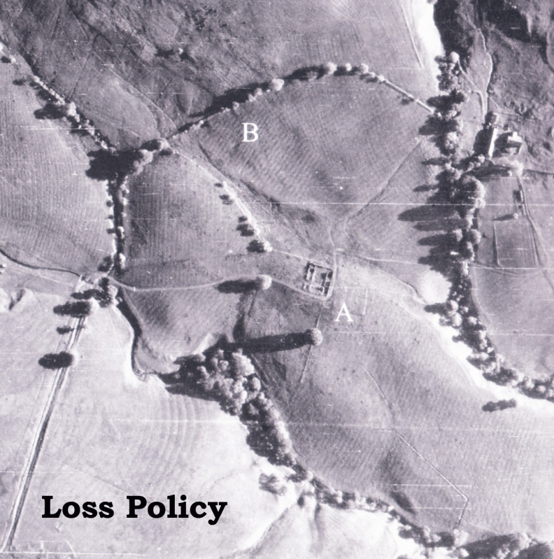 aerial-view-of-loss-farm-copy