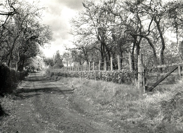 approach-to-drumdruills-in-1958