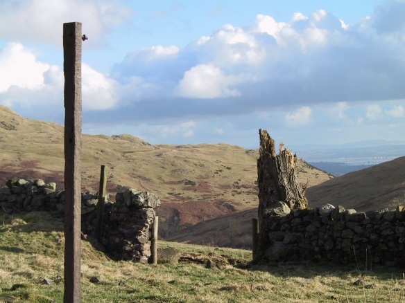 view-from-jerah-down-menstrie-glen