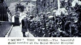Floral Corridor Royal Cornhill, Dec 1930