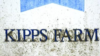 Kipps Farm, Linthgow, 7 June 2017 (1) - Copy