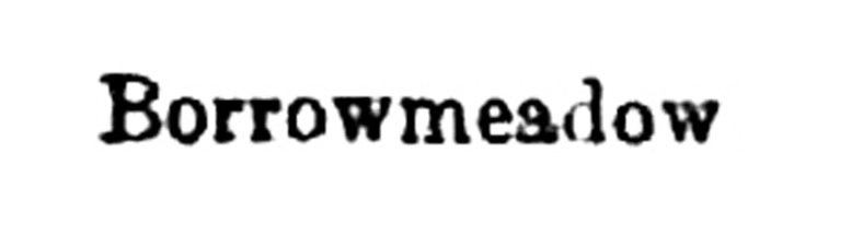Borrowmeadow title